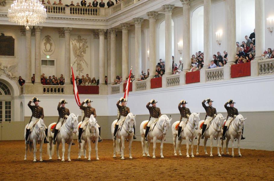 Spanische Hofreitschule - die Lipizzaner gehören zu Wien wie der Stephansdom und das Riesenrad