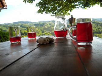 Himbeerhof Renner - Himbeeren, Wein, Kürbis und vieles mehr