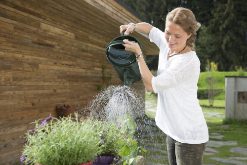 Pflanzen und Gemüse lieben GRANDER® belebtes Wasser