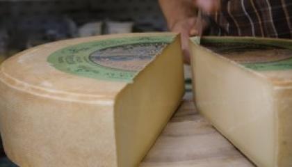 Naturkäserei Tegernseer Land – Das Beste aus der Milch