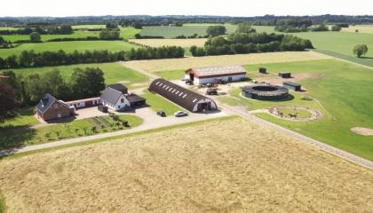 Renn-Pferdewirtschaft Familie Hansen, Faxe, Dänemark
