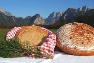 """Bäckerei Schmid – """"Haller-Bäck"""""""